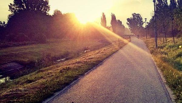 Rákos-patak menti futóút