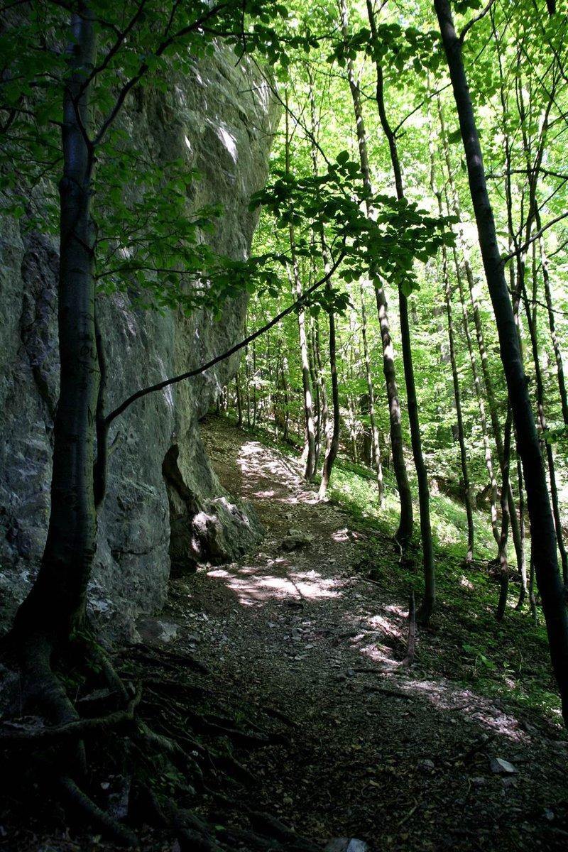 Függőleges sziklafal