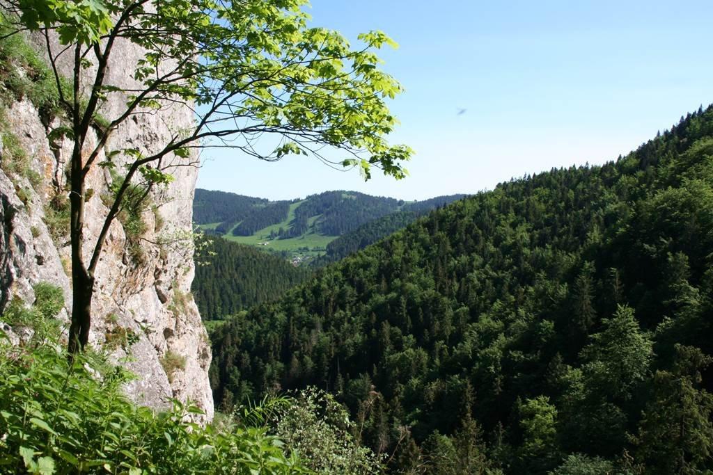Kilátópont a völgyre