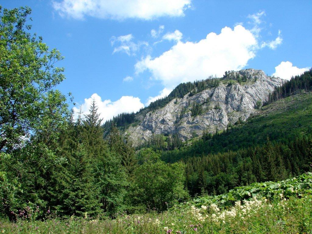 Javorináról Barlangligetre majd a Fehérvíz parkolóba