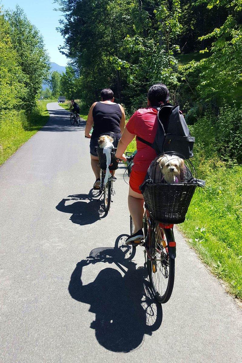 A Dráva kerékpárúton a kutyák is szívesen látott átutazók