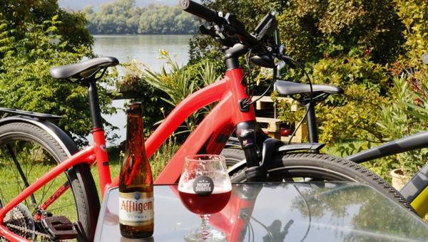 Dunakanyar kerékpártúra (Sződliget - Zebegény)