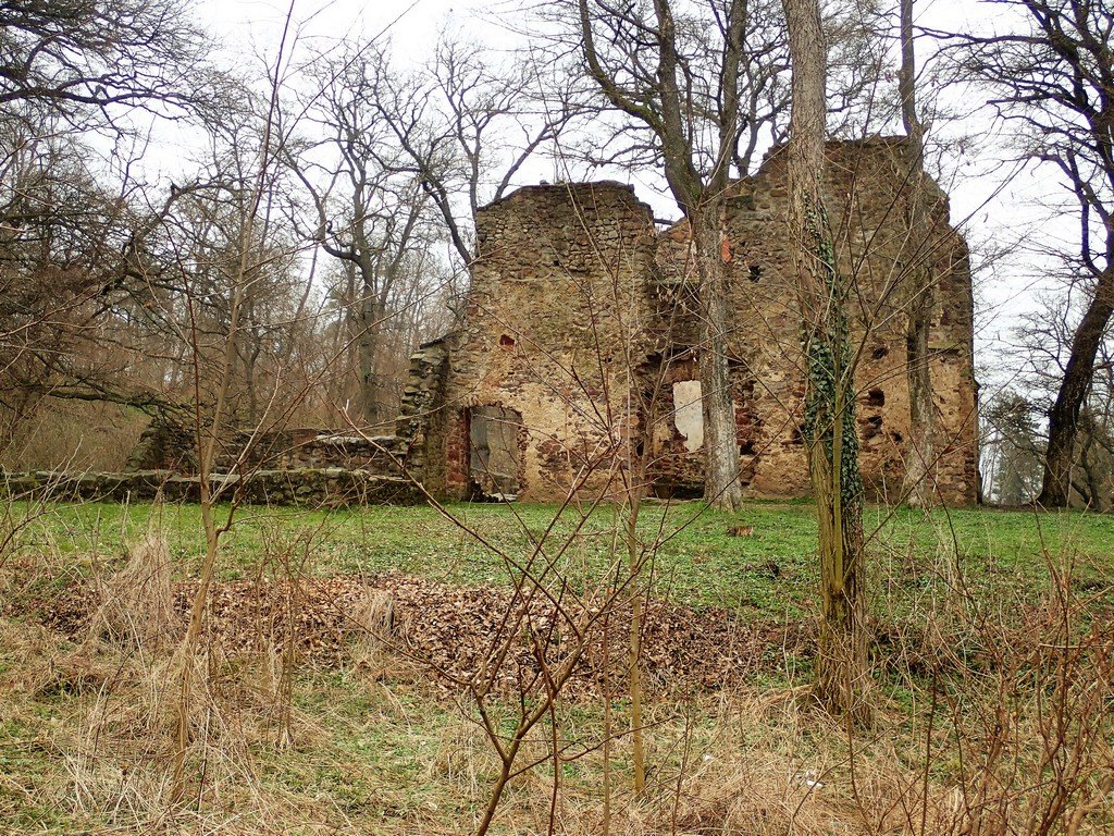 A Salföldi pálos kolostor romjai