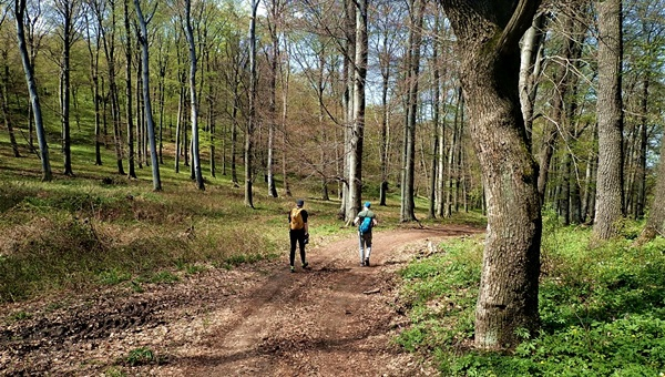 Vadászkápolna és mézeskalács falu: Csákvártól Vérteskozmáig