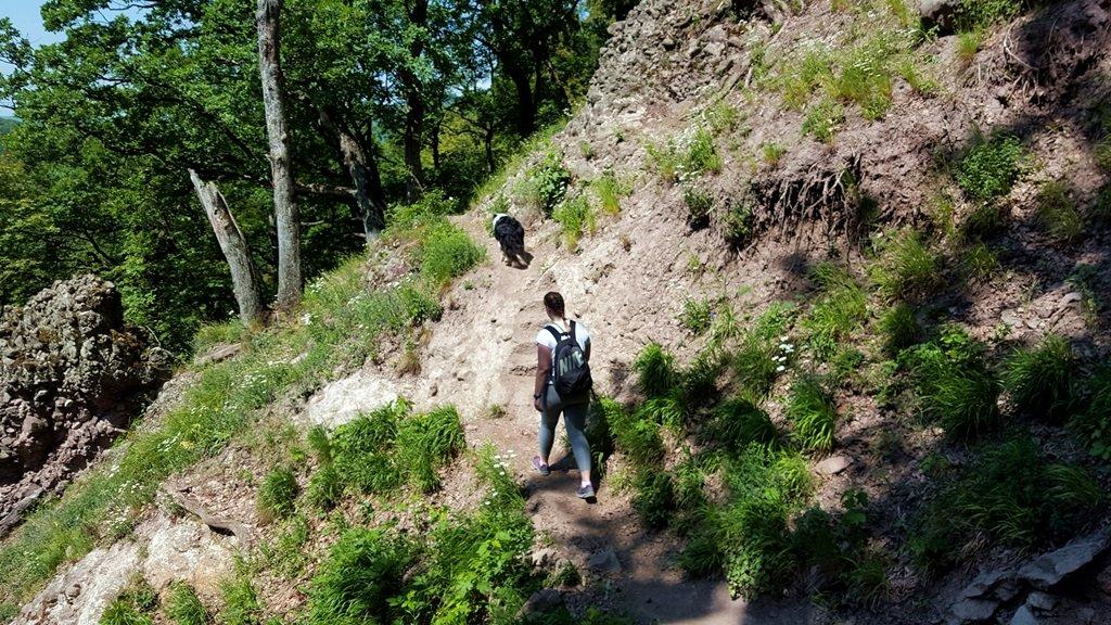 Lépcső az ösvényben
