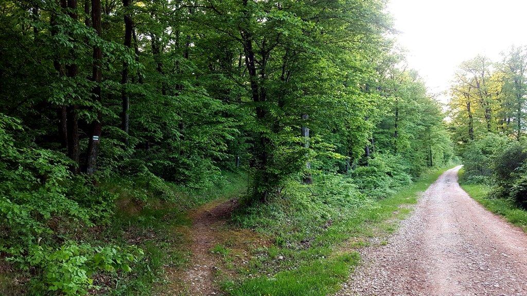 A dózerút és a zöld jelzés párhuzamosan fut egymás mellett