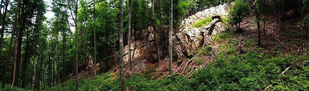 Meredek sziklafalak az ösvény felett és a Szoplák-, Pilis-, Jóreménység- és Gombás-barlang lelőhelye