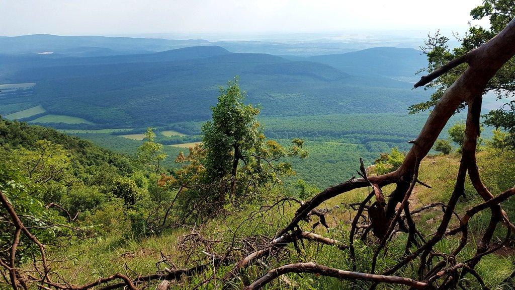 A kilátópontról csodás panoráma tárul elénk a völgyre és a távolban Piliscsévre