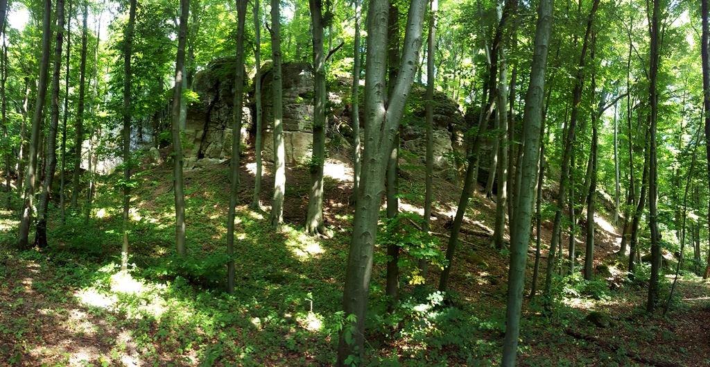 Az út mellett jobb oldalon felfedezünk egy sziklafalat