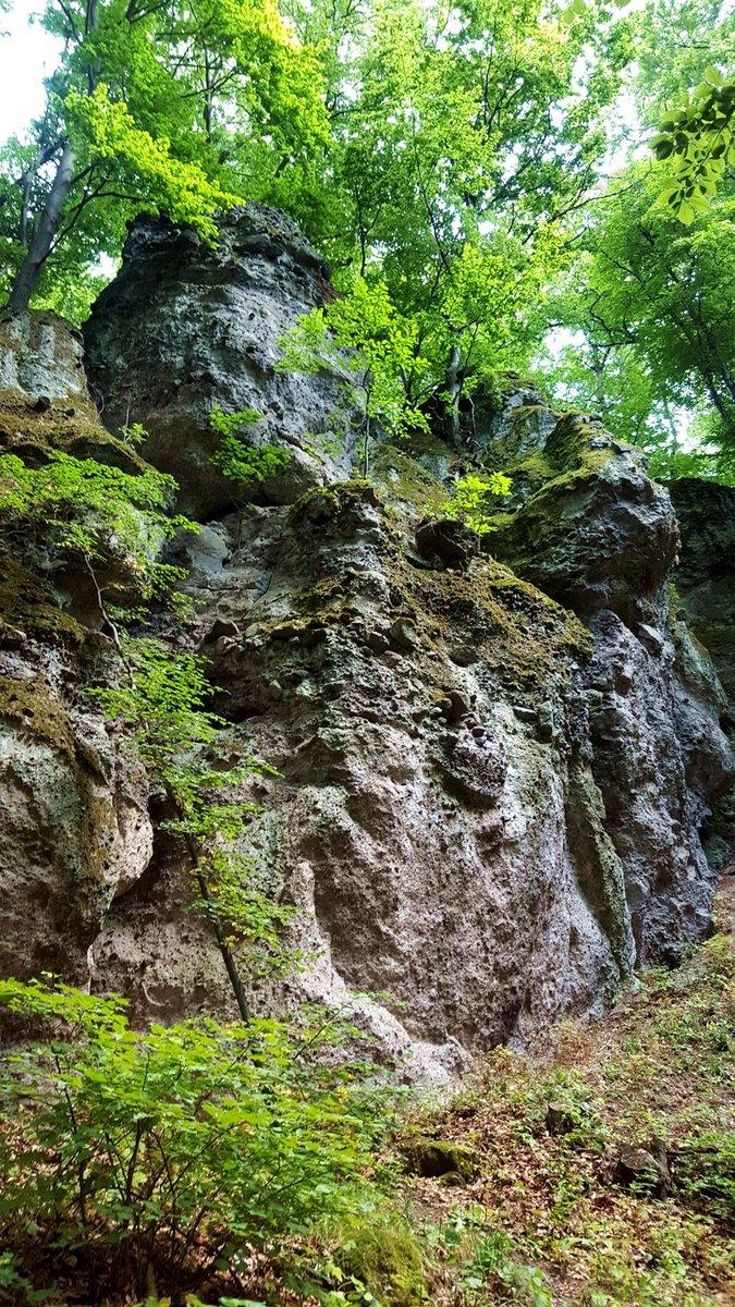 A tagolt sziklafal egész hosszan elnyúlik