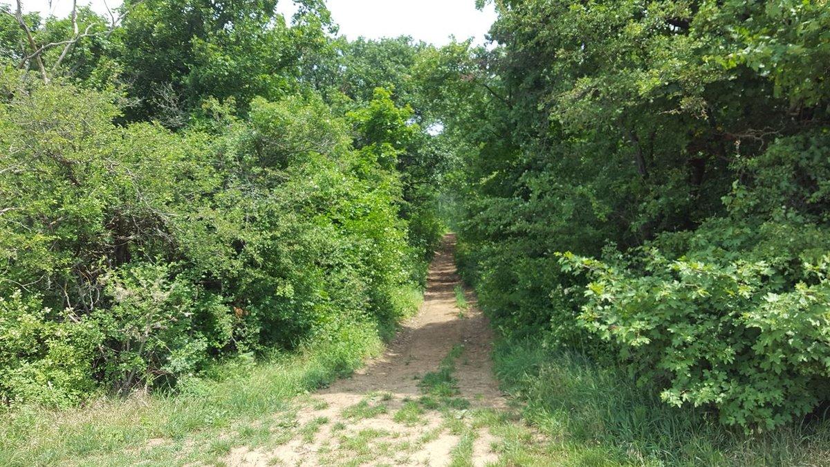Az első lehetséges ösvényen elkanyarodunk jobbra