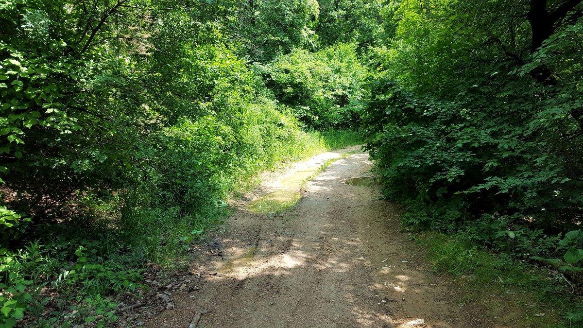 Ahogy kiérünk a keskeny ösvényről balra fordulunk