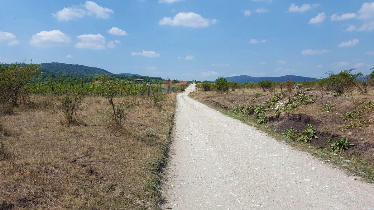 Hosszú egyenes murvás út, láthatóan mindennemű árnyék nélkül