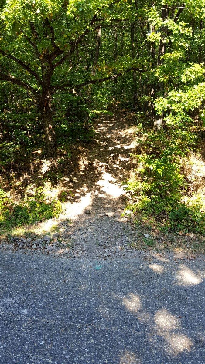 Az aszfaltutat elérve egyenesen megyünk tovább a keskeny ösvényen