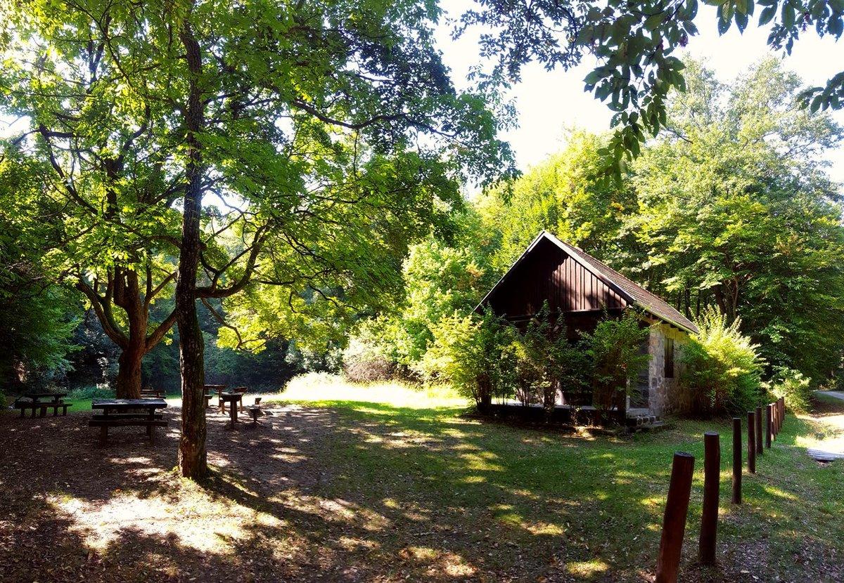 Kulcsosház az erdő közepén