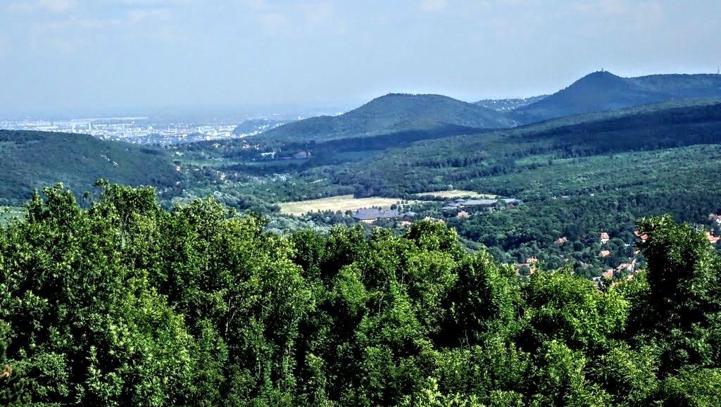Alattunk Nagykovácsi, a távolban pedig a Hárs-hegy és mögötte a János-hegy
