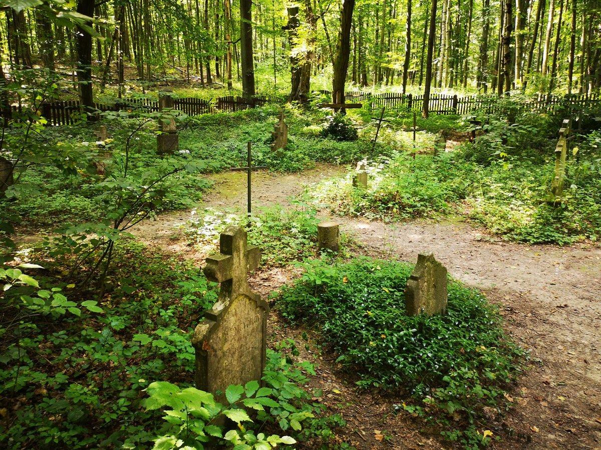 Körtvélyesi temető
