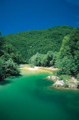 Sava Bohinjka folyó
