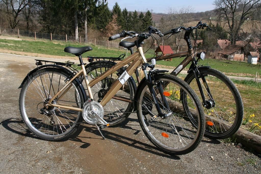 Kölcsönözhető trekking kerékpárok a házban