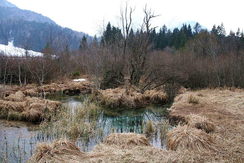 A Sava Dolinka folyó forrása