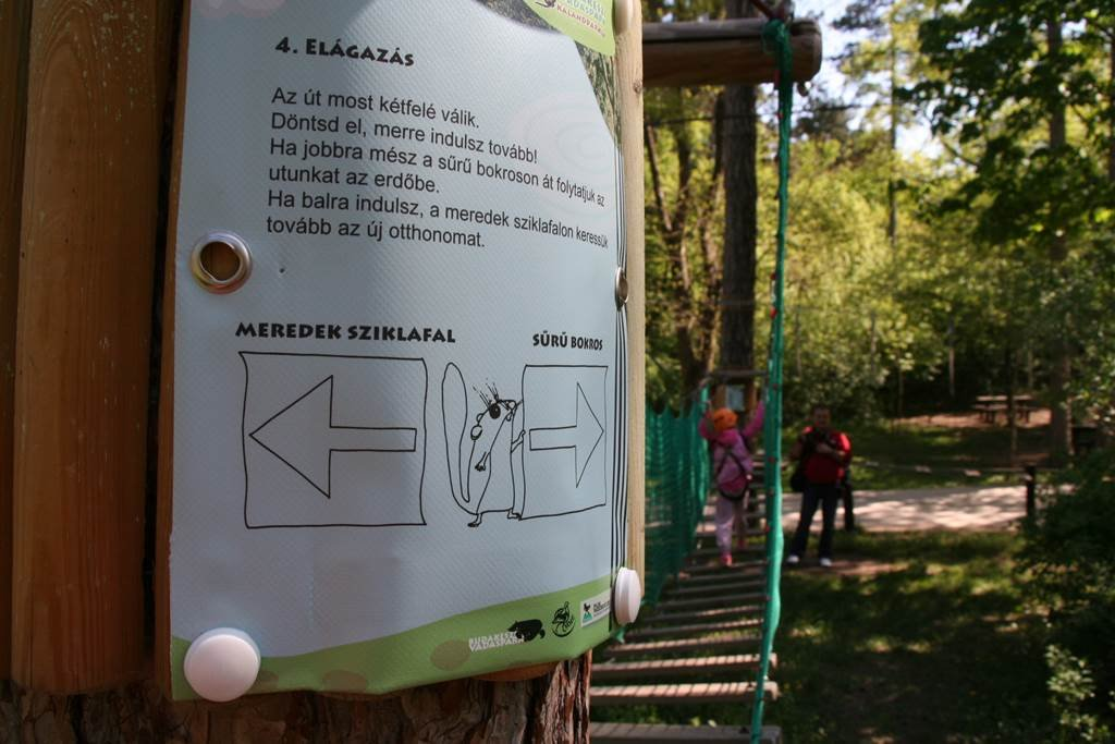 Érdekes infók a táblákon, amíg a gyerekek a sorukra várnak