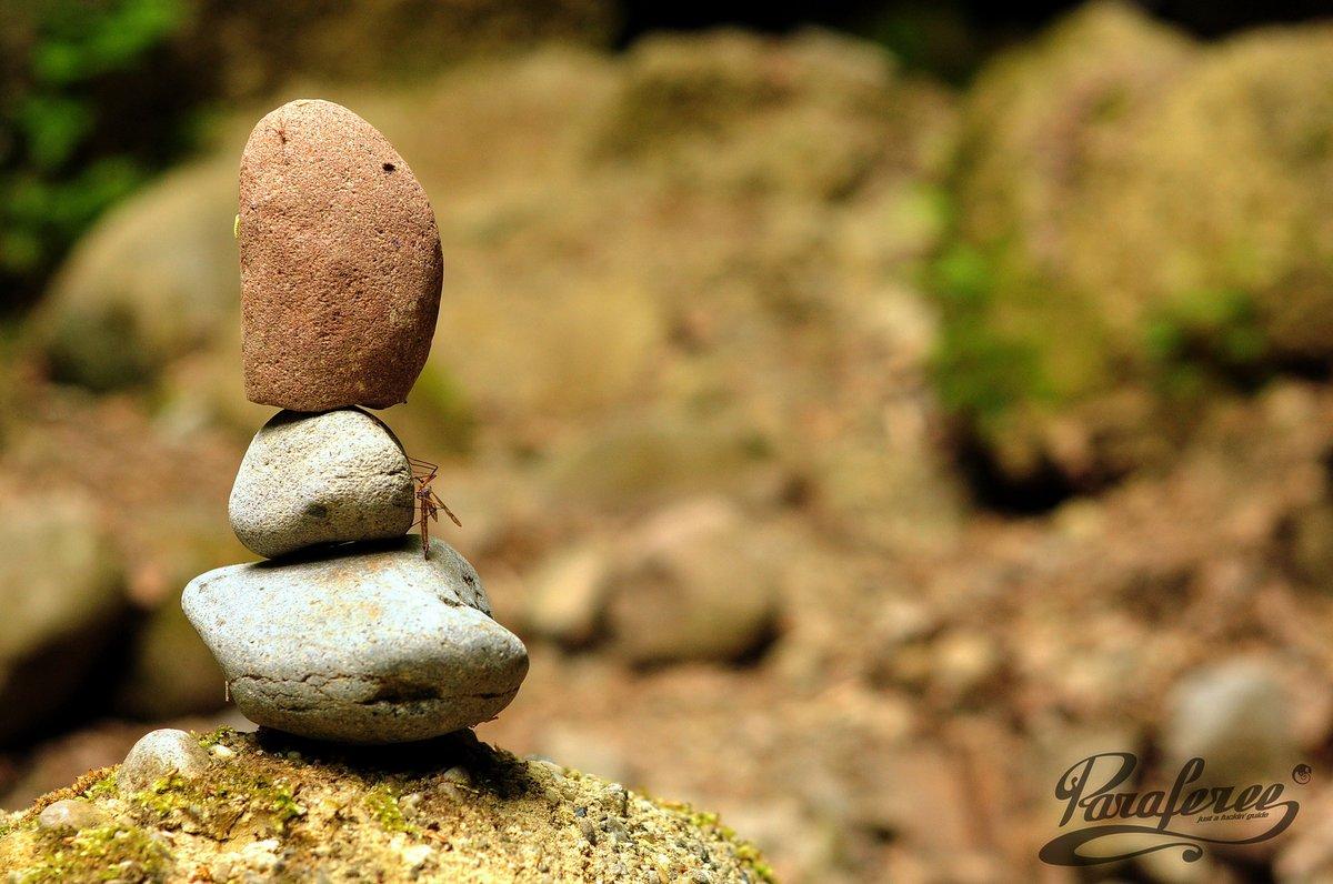 A formás kavicsokból kőbabák épülnek az erre járók kezenyomán