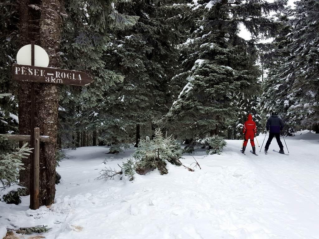 Titkos erdei ösvényen irány Pesek, a legszuperebb hütte Roglán!