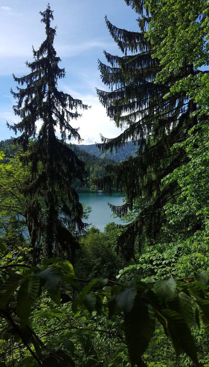 A várkastélyhoz egy kis erdei gyalogos szerpentin vezet fel a tó partjáról
