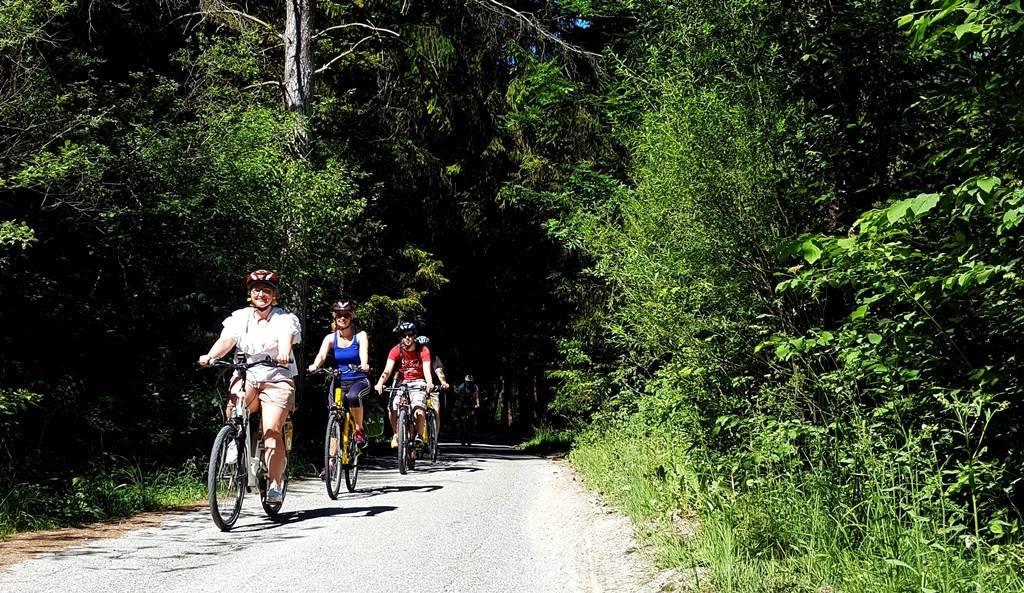 Néhány erdős szakasz is tarkítja az útvonalat