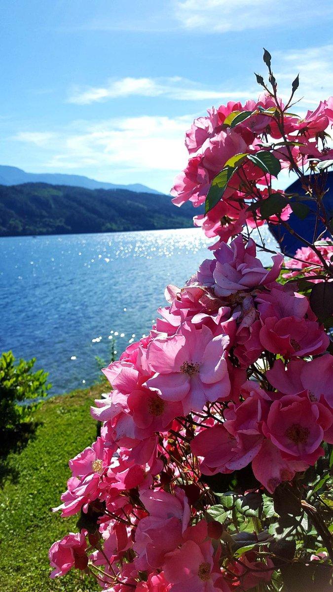 A Millstatti tó panorámája az I. Karintiai Fürdőházból