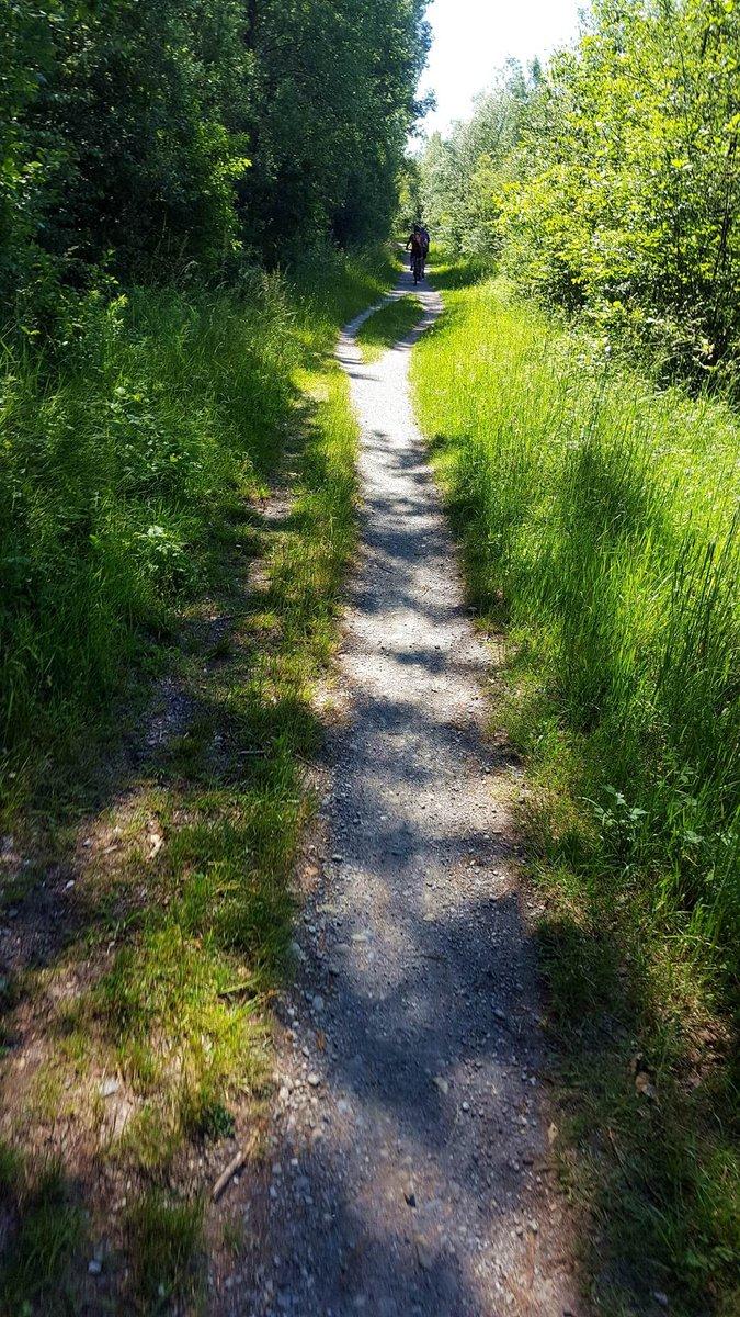 Egy szeletke single trail a Dráva partján