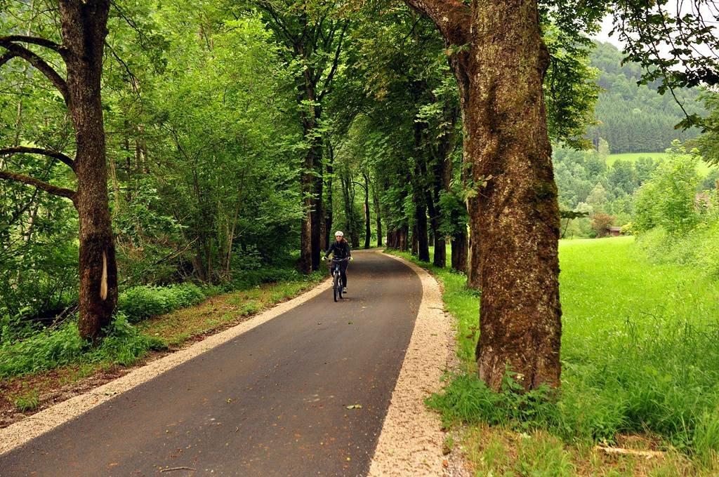 Árnyas fasor védelmezi a tűző naptól a kerékpárutat