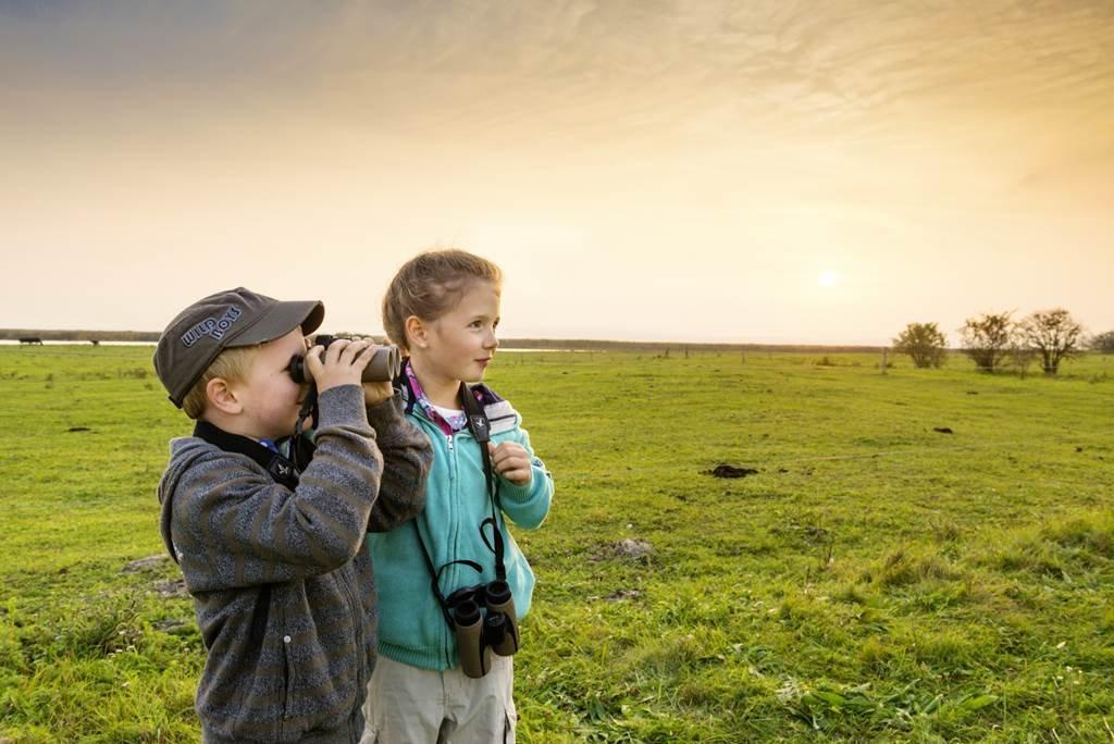 Természetmegfigyelés gyerekekkel