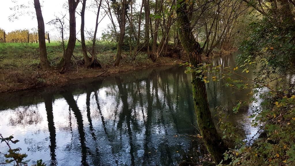 A Vipava folyó