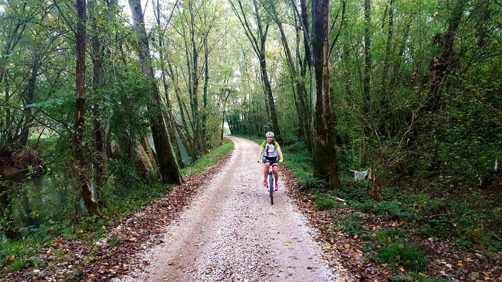 Bringázás a Vipava folyó melletti erdőben