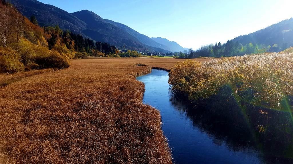 Zelenci a Száva folyó forrása