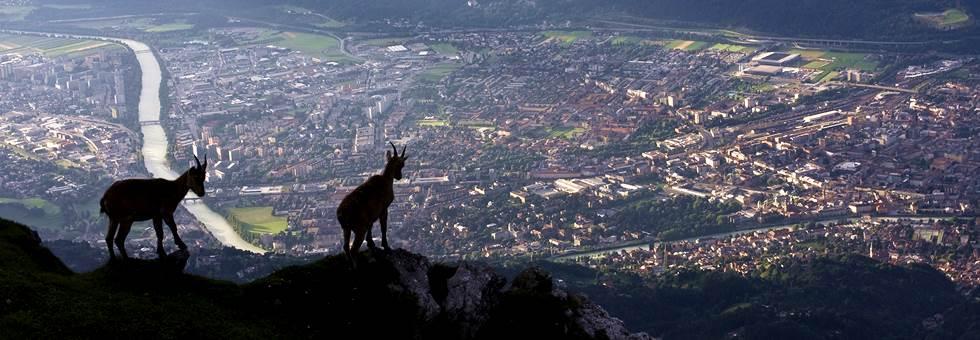 Innsbruck Alpine Terepfutó Fesztivál