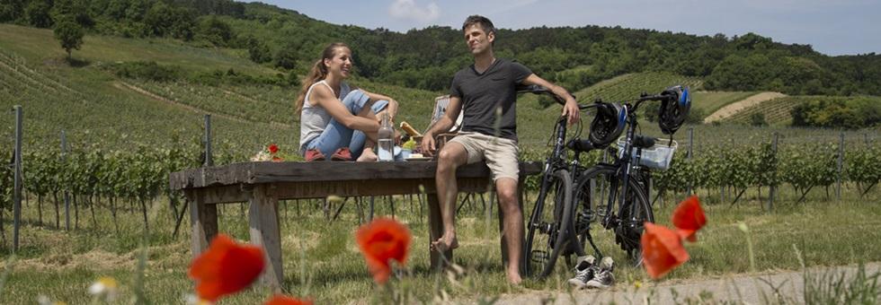 Kerékpáros, kulináris és kulturális élmények a Bécsi-erdőben