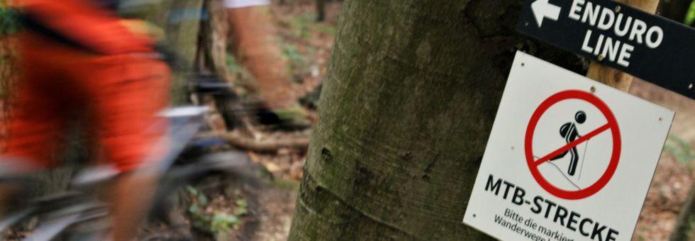 Bringás álom a bécsi erdőben
