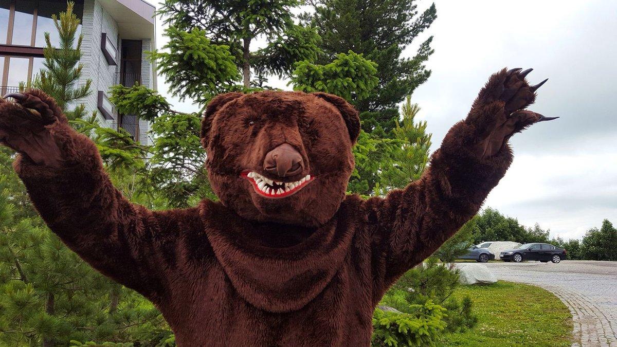 A híres szlovák barna medve