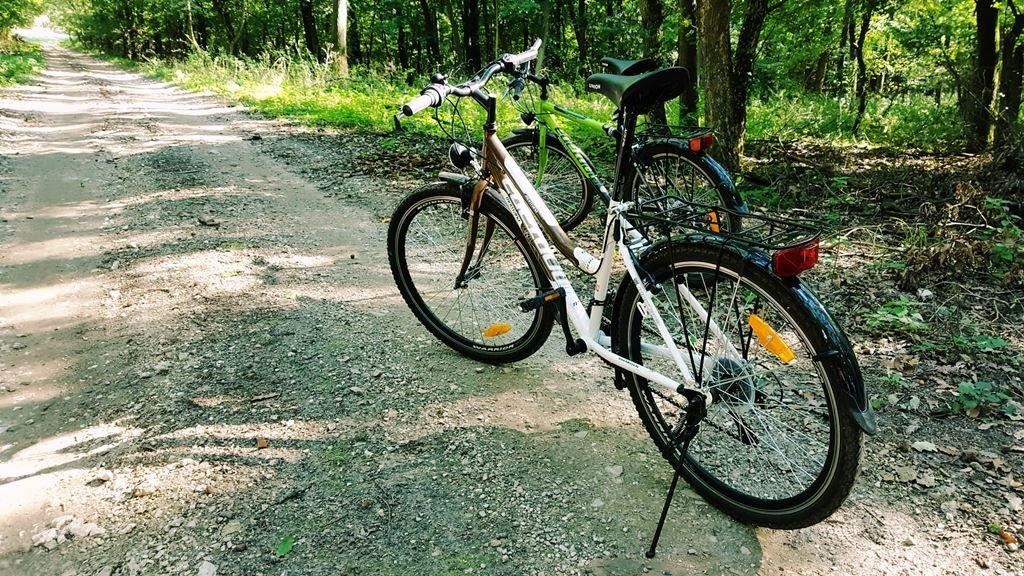 Kölcsönzött kerékpárokkal a Gerecsében