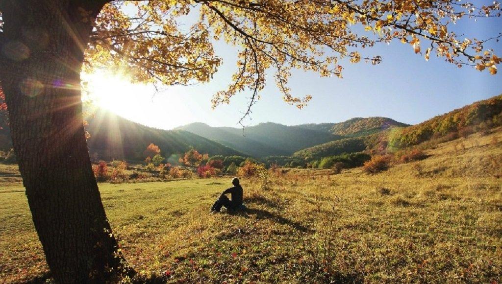 Alpannonia ősz