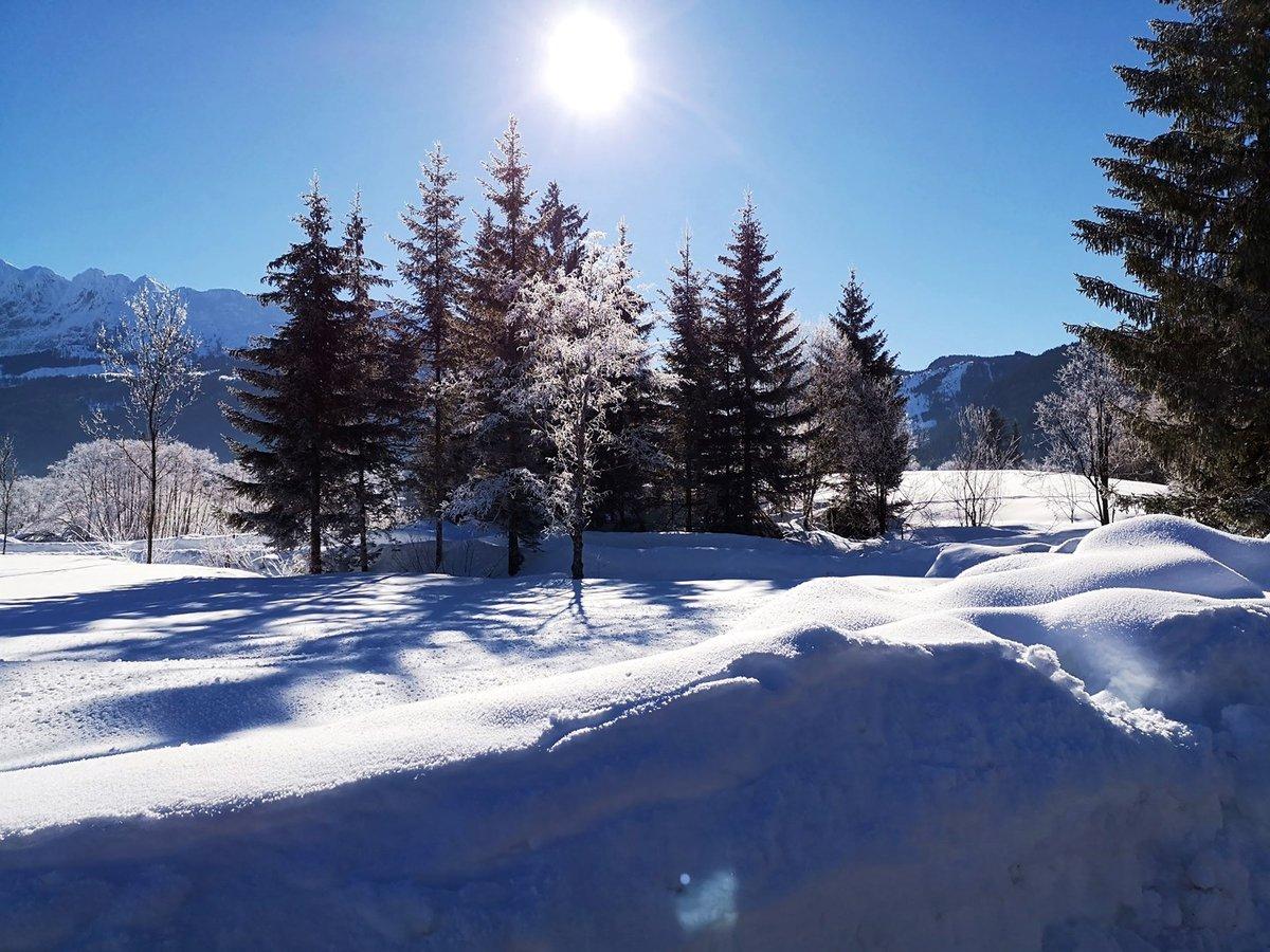 Lovasszánozás a Bad Mitterndorf melletti völgyben