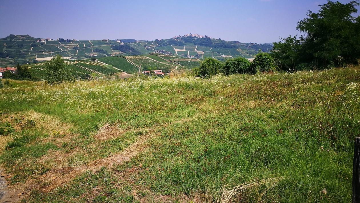 Valahol Asti közelében