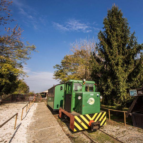 Újraindul az erdei vasút Mesztegnyőn