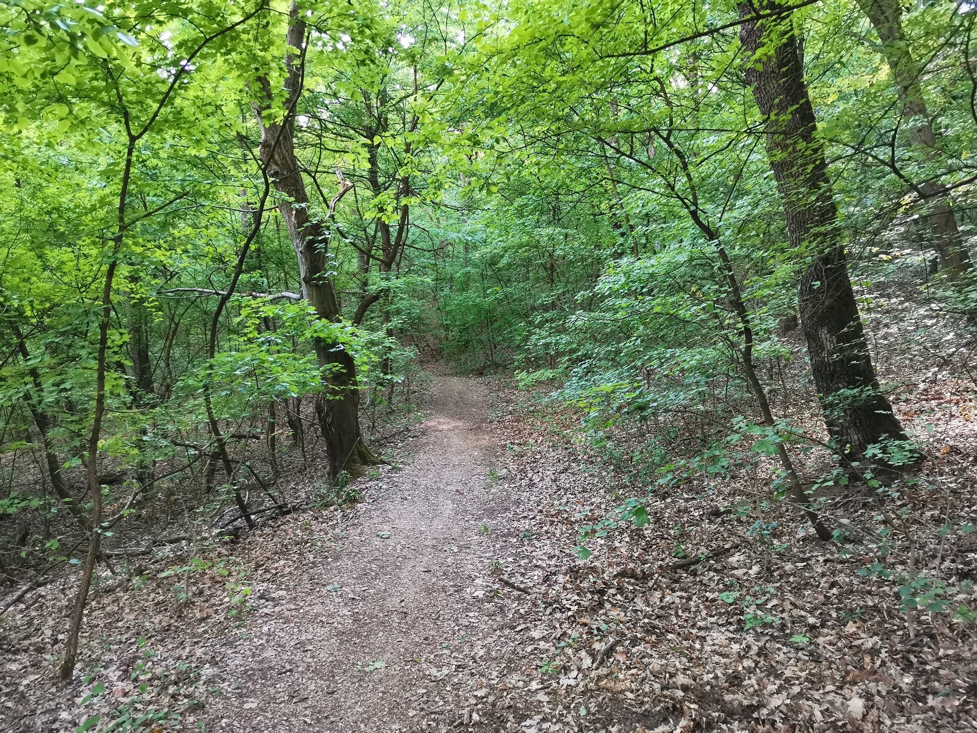 Túra Miskolc-Tapolcáról a Leányvárhoz-5