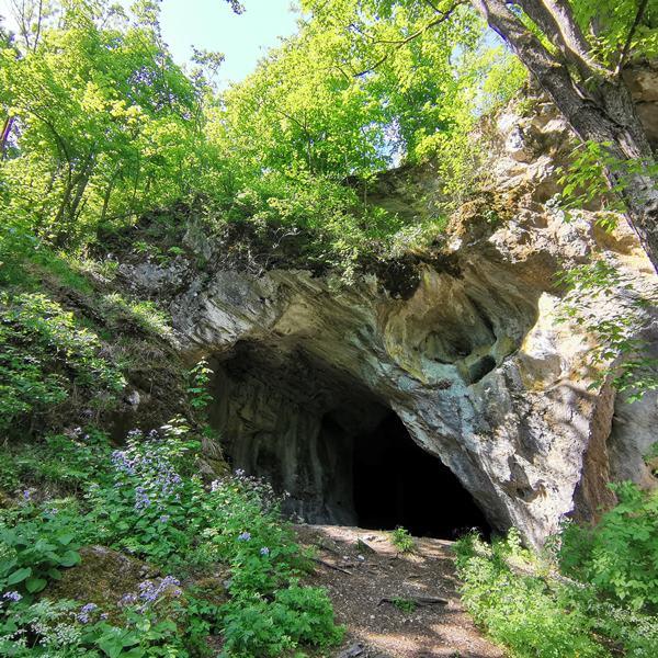 Túra a Hór-völgyében és a Pénzpatak víznyelő barlangjához