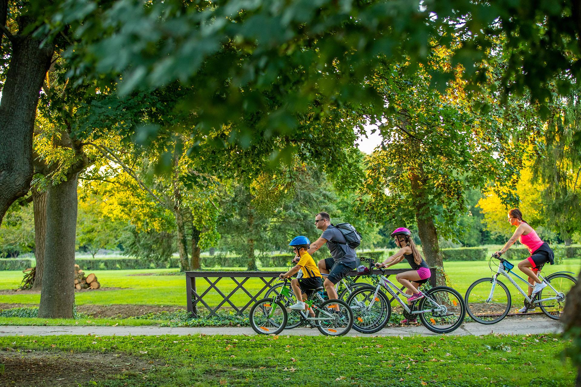 VELOREGIO: kerékpáros útvonalak határon innen és túl az Alpok lábánál-3