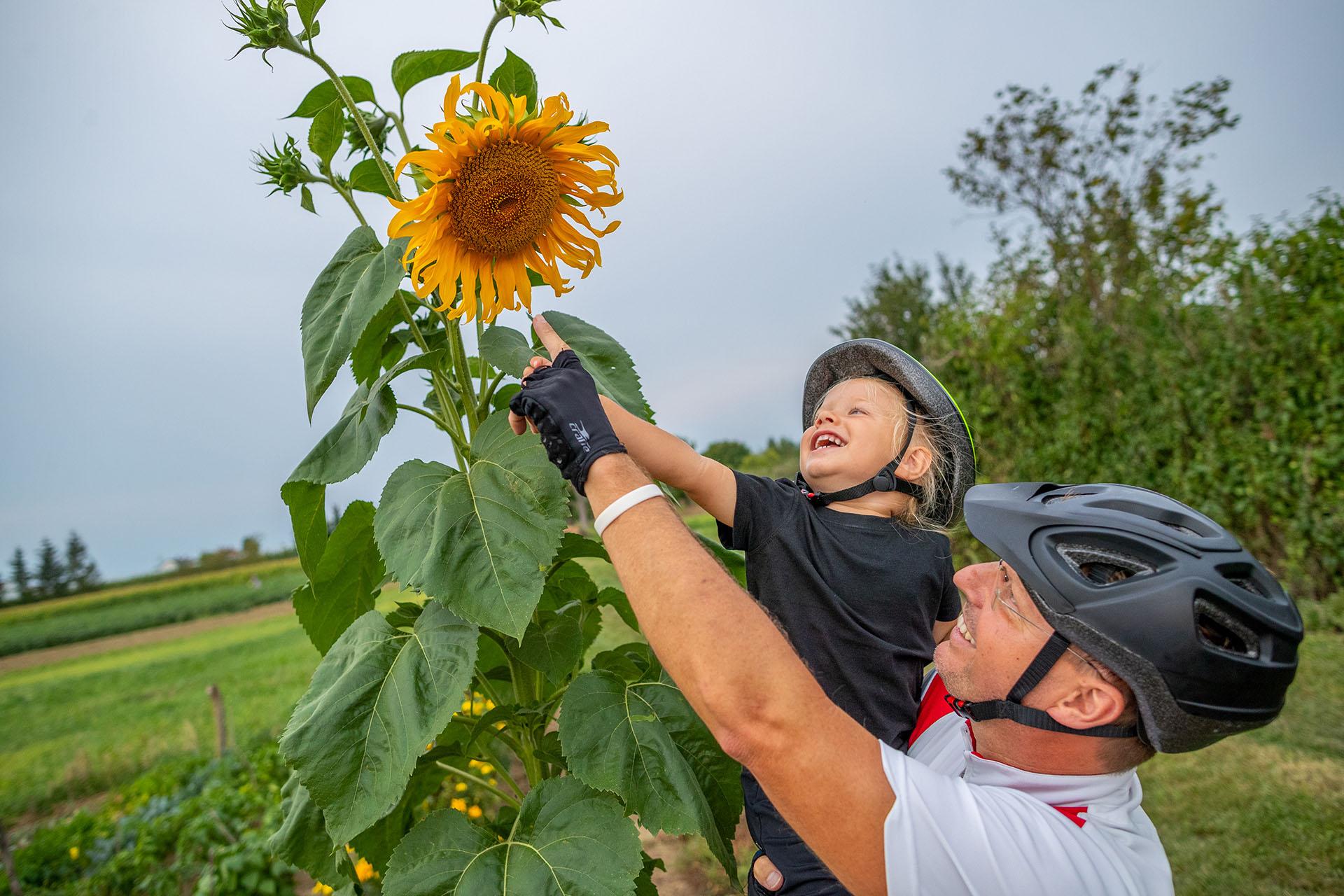 VELOREGIO: kerékpáros útvonalak határon innen és túl az Alpok lábánál-6