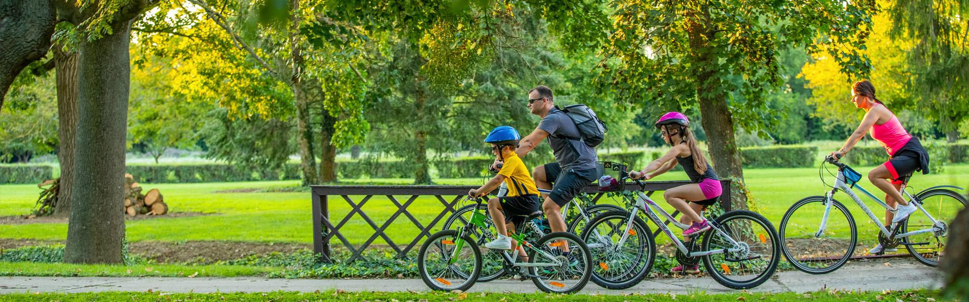 VELOREGIO: kerékpáros útvonalak határon innen és túl az Alpok lábánál